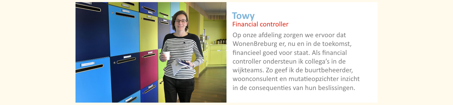 Financial controller Towy